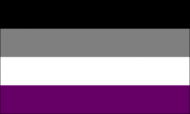 The final asexual flag design has four horizontal stripes with the colors black, gray, white, and purple.