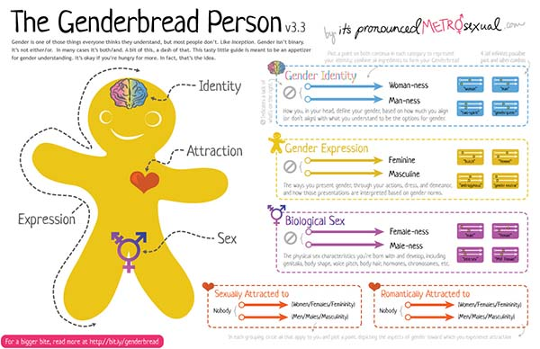 The Genderbread Person v3.3. Includes 10 one-dimensional spectra for gender, sex, and attraction.